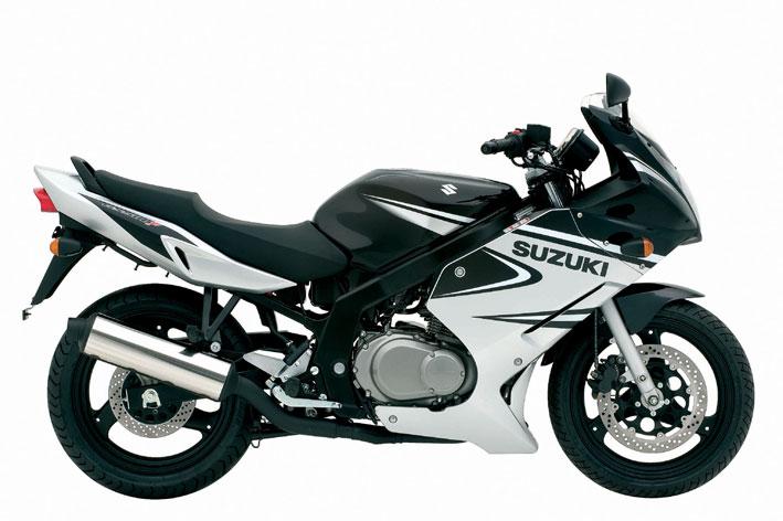 Suzuki GS500F 2006
