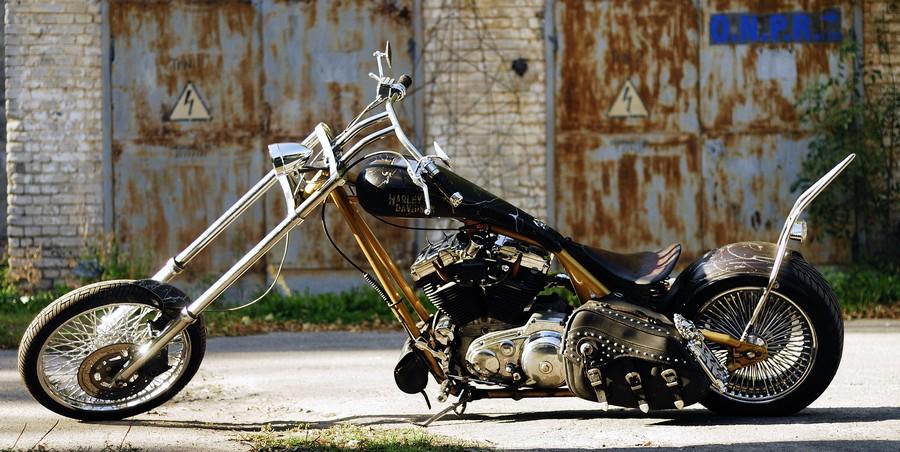 custom harley davidson motorcycles pose